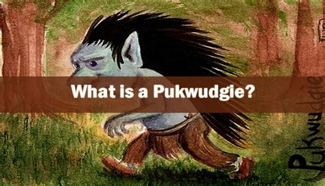 What is a Pukwudgie? - Sightings - Cryptids Guide